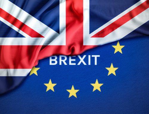 Transition (Brexit) Statement